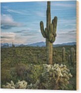 A Spring Evening In The Sonoran  Wood Print