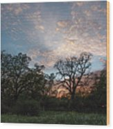 A Spring Evening Wood Print