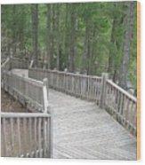 A Stairway View Wood Print