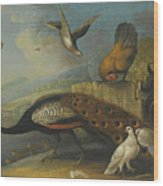 A Still Life With A Peacock, Pigeons And Chickens In A River Landscape Wood Print
