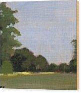 A Streak Of Sun - Queeny Park Wood Print