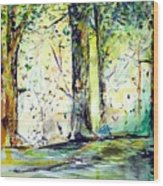 A Stroll On East 93rd Wood Print