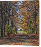 A Stroll Through Autumn Colors Wood Print