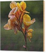 A Study In Orange 2 Wood Print