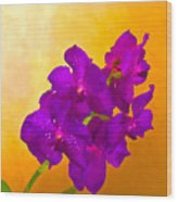 A Study In Orchid Wood Print