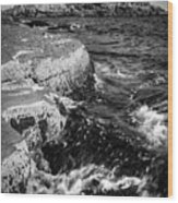A Summer's Day At Nubble Light, York, Maine  -67969-bw Wood Print