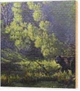 A Sunny Meadow Wood Print