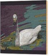 A Swan Me A Swan Wood Print