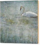 A Swan's Reverie Wood Print