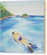 A Swim In Cayos Wood Print