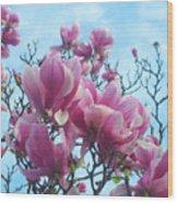 A Symphony Of Magnolia Flowers Wood Print