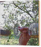 A Taste Of Spring Wood Print