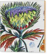 A Thistle Wood Print