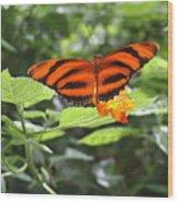 A Tiger Amongst The Petals Wood Print
