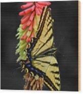A Tiger On A Poker Wood Print