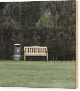 A Trash Can And Wooden Benches In A Small Grassy Area Wood Print