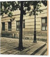 A Tree Grows In Barcelona Wood Print