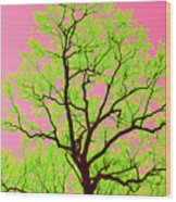 A Tree Grows In Vegas Wood Print