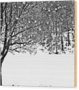 A Tree In Snowy Winter Wood Print