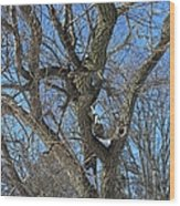A Tree In Winter- Vertical Wood Print