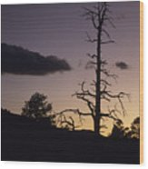 A Tree Is Silhouetted By The Setting Wood Print