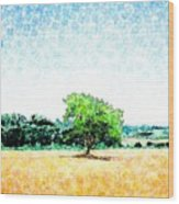 A Tree Near Siena Wood Print