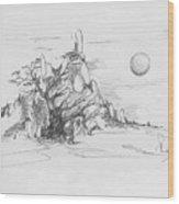 A Tree Rocks And The Sun Wood Print