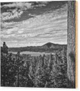 A Tree Stands Guard Over Big Bear Lake Wood Print