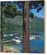 A Trees View Of Fallen Leaf Lake Wood Print