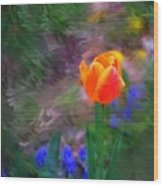 A Tulip Stands Alone Wood Print
