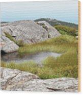 A Vernal Pool Atop A Subalpine Granite Balds Wood Print