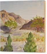 A View At Red Rock Wood Print