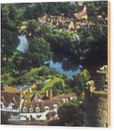 A View From Blarney Castle In Ireland Wood Print