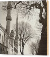 A View From Blue Mosque Wood Print