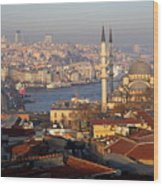 A View From Istanbul Wood Print