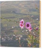 A View From Mt. Arbel Wood Print