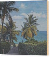 A View In The Virgin Islands Wood Print