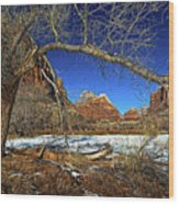 A View In Zion Wood Print