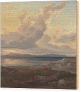A View Of Aegina Wood Print