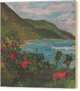 A View Of Carambola Wood Print