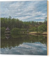 A View Of Meadowlark Gardens Early On A Spring Morning Cm1 Wood Print