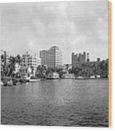 A View Of Miami Wood Print