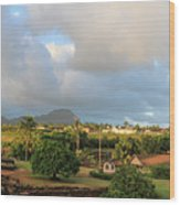 A View Of Prince Kuhio Park Wood Print