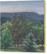 A View Of The Catskill Mountains Wood Print