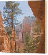 A View Of The Hoodoos And Erosion Wood Print