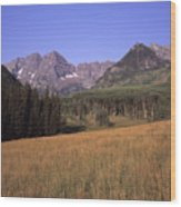 A View Of The Maroon Bells Mountains Wood Print