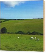 A View Over Exmoor 2 Wood Print
