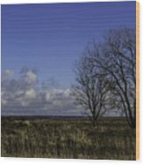 A View So Blue Wood Print