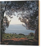 A View To The Sea Wood Print