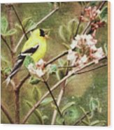 A Vision Of Spring Wood Print